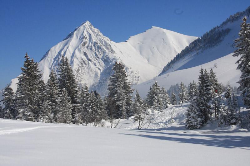 le Mont Pecloz et le Mont d'Armenaz depuis le pied de la combe aux Chevaux