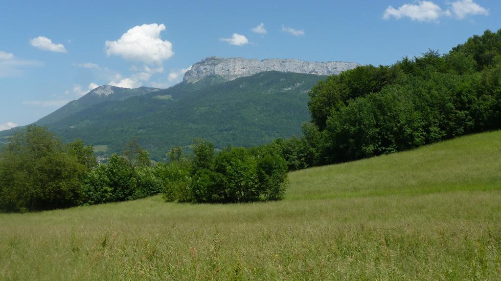 le Parmelan depuis la tour télécom du Veyrier