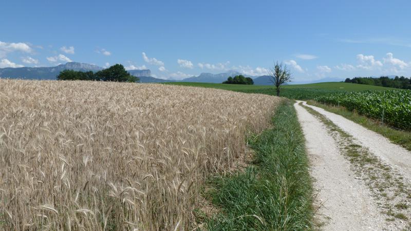 le Parmelan et la Tournette depuis le hameau de la Mandallaz